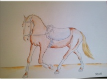 Koník akvarel