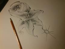 Slza na květu