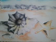 U moře