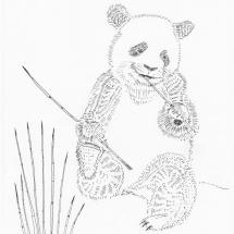 Medvidek